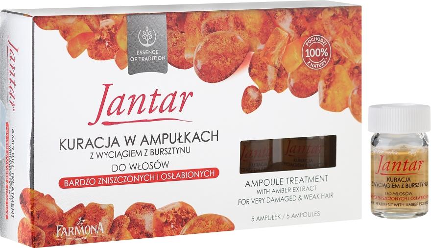 Ампули с екстракт от кехлибар за силно увредена коса - Farmona Jantar Hair Treatment In Ampoules