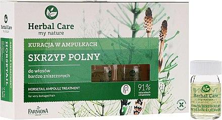 Подхранващи ампулки против косопад за стимулиране растежа на косата - Farmona Herbal Care Horsetail Ampoule Treatment