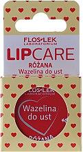 """Парфюми, Парфюмерия, козметика Вазелин за устни """"Роза"""" - Floslek Lip Care Cosmetic Lip Vaseline Rose"""