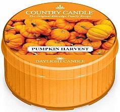 Парфюмерия и Козметика Ароматна чаена свещ - Country Candle Pumpkin Harvest Daylight