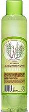 Парфюмерия и Козметика Шампоан за коса с екстракт от хвощ - Eva Natura Nature Style Horsetail Shampoo