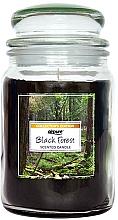 """Парфюмерия и Козметика Ароматна свещ """"Черна гора"""" - Airpure Jar Scented Candle Black Forest"""
