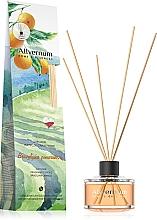 "Парфюмерия и Козметика Арома дифузер ""Бразилски портокал"" - Allverne Home&Essences Diffuser"