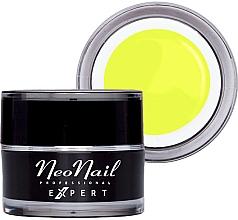 Парфюмерия и Козметика Цветен гел за нокти - NeoNail Professonal Expert Paint UV Gel