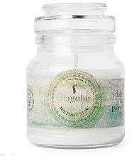 """Парфюмерия и Козметика Ароматна свещ в бурканче """"Ментово езеро"""" - Flagolie Scented Candle Boho Mint Pond"""