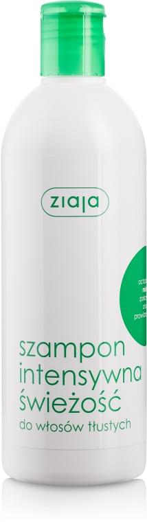"""Освежаващ шампоан за мазна коса """"Мента"""" - Ziaja Shampoo"""