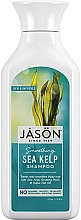 Парфюмерия и Козметика Шампоан за коса с екстракт от водорасли - Jason Natural Cosmetics Smoothing Sea Kelp Shampoo