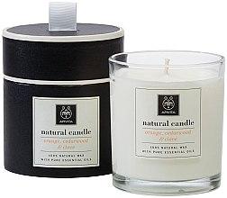 Парфюми, Парфюмерия, козметика Натурална свещ с аромат на портокал, кедър и карамфил - Apivita