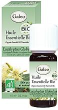 Парфюмерия и Козметика Органично етерично масло от евкалиптус глобулус - Galeo Organic Essential Oil Eucalyptus Globulus