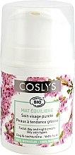 Парфюмерия и Козметика Дневен крем за мазна кожа - Coslys Day Cream Oily Skin Types