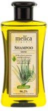 Парфюмерия и Козметика Шампоан за коса - Melica Organic Shine Shampoo