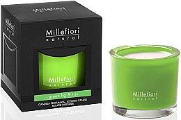"""Парфюми, Парфюмерия, козметика Ароматна свещ """"Зелена смокиня и ирис"""" - Millefiori Milano Natural Candle Green Fig & Iris"""