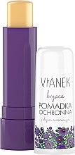 Парфюми, Парфюмерия, козметика Успокояващ балсам за устни със сусамово масло - Vianek Lip Balm