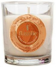 """Парфюмерия и Козметика Ароматна свещ """"Пикантна релаксация"""" - Flagolie Fragranced Candle Relaxing Spice"""