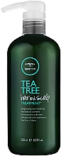 Лечебен скраб екстракт от чаено дърво - Paul Mitchell Tea Tree Hair & Scalp Treatment — снимка N2