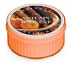 Парфюмерия и Козметика Чаена свещ - Kringle Candle Autumn Harvest Daylight