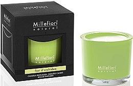 """Парфюми, Парфюмерия, козметика Ароматна свещ """"Орхидея"""" - Millefiori Milano Natural Candle Fior d'Orchidea"""