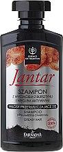 Парфюмерия и Козметика Детоксиращ шампоан с активиран въглерод против себорея - Farmona Jantar Detoxifying Shampoo With Active Charcoal