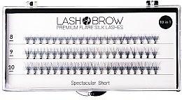 Парфюми, Парфюмерия, козметика Изкуствени мигли - Lash Brown Premium Flare Silk Lashes Spectacular Short