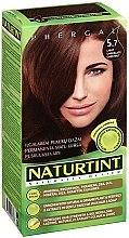 Парфюмерия и Козметика Боя за коса - Naturtint Permanent Hair Colour System
