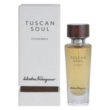 Парфюми, Парфюмерия, козметика Salvatore Ferragamo Tuscan Soul Vendemmia - Тоалетна вода