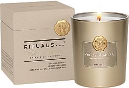 Парфюми, Парфюмерия, козметика Ароматна свещ - Rituals Private Collection Orris Mimosa Scented