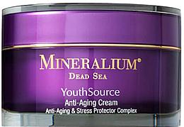 Парфюмерия и Козметика Антистареещ крем за лице  - Minerallium Youth Source Anti-Aging Cream