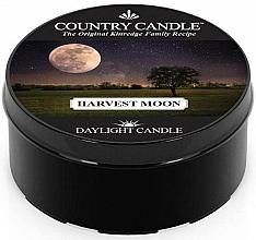 Парфюмерия и Козметика Ароматна чаена свещ - Country Candle Harvest Moon Daylight