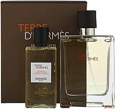 Парфюмерия и Козметика Hermes Terre dHermes - Комплект (тоал. вода/100ml + душ гел/80ml)