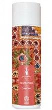 Парфюмерия и Козметика Шампоан за боядисана коса - Bioturm Shampoo Color Nr.108