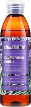 Парфюмерия и Козметика Шампоан за мазна и склонна към пърхот коса - Barwa Herbal Lavender Shampoo