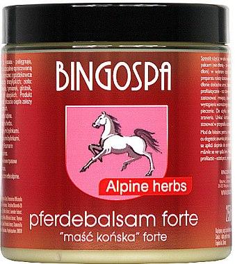 Конски мехлем с алпийски билки - BingoSpa Ointment Horse With Alpine Herbs — снимка N1