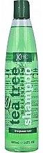 Парфюмерия и Козметика Хидратиращ и подхранващ шампоан за коса - Xpel Marketing Ltd Tea Tree Shampoo