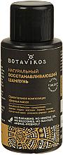 Парфюмерия и Козметика Натурален шампоан за коса - Botavikos Natural Repairing Shampoo (мини)
