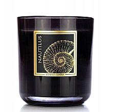 Парфюмерия и Козметика Ароматна свещ в чаша - Kringle Candle Nautilus Black Jar Candle