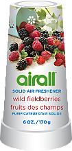 """Парфюми, Парфюмерия, козметика Ароматизатор за дома """"Горски плодове"""" - Airall Air Freshener Solid Wild Berries"""