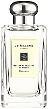 Парфюми, Парфюмерия, козметика Jo Malone Nectarine Blossom and Honey - Одеколон (тестер с капачка)