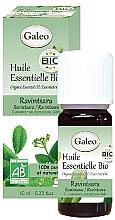 Парфюмерия и Козметика Органично етерично масло от равинтсара - Galeo Organic Essential Oil Ravintsara