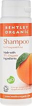 Парфюмерия и Козметика Шампоан за ежедневна употреба - Bentley Organic Shampoo For Frequent Use