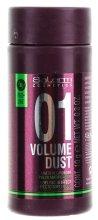 Парфюми, Парфюмерия, козметика Пудра за обем и плътност - Salerm Pro Line Volume Dust 01 Mattifying Powder