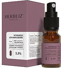 Парфюмерия и Козметика Спрей за уста с масло от касис и канабидиол 2,5% - Herbliz CBD Oil Mouth Spray 2,5%