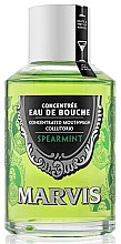 Парфюмерия и Козметика Антибактериална вода за уста с мента - Marvis Concentrate Spreamint Mouthwash