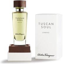 Парфюми, Парфюмерия, козметика Salvatore Ferragamo Tuscan Soul Convivio - Тоалетна вода