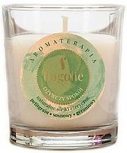 """Парфюмерия и Козметика Ароматна свещ """"Освежаваща"""" - Flagolie Fragranced Candle Refreshing Peace"""