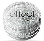 Парфюмерия и Козметика Пудра за нокти - Ronney Professional Holo Effect Nail Art Powder