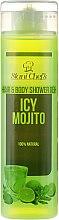 Парфюми, Парфюмерия, козметика Душ гел за тяло и коса - Stani Chef's Hair And Body Shower Gel Icy Mojito
