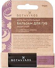 Парфюми, Парфюмерия, козметика Защитен балсам за устни с масла от кокос и камелия - Botavikos Lip Balm